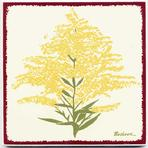 Yellow goldenrod tile, wall plaque, trivet for kitchen backsplash, bathroom tile, or wall decor
